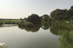 park farm fishery
